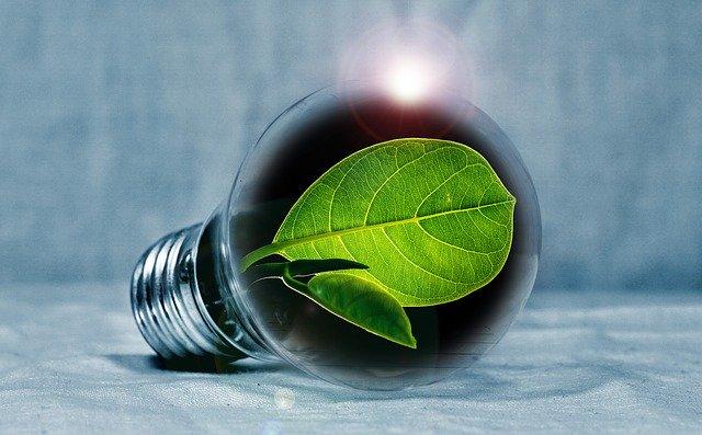 אנרגיה ירוקה: כך תוכלו לייצר חשמל בבית שלכם