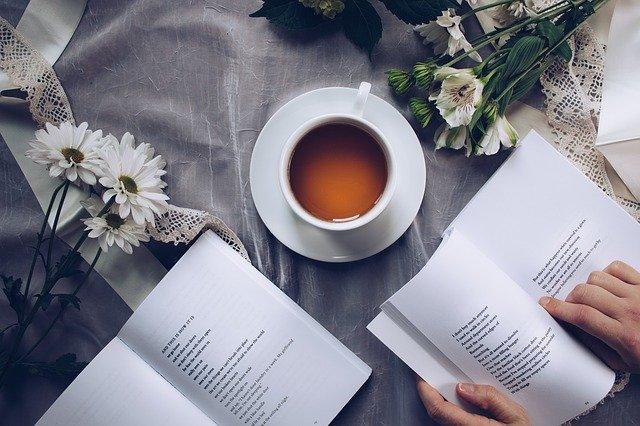 קוראים ונהנים: ספרים מעולים באנגלית ממתינים באתר סטימצקי, ואלו כל הסיבות להתחיל לקרוא
